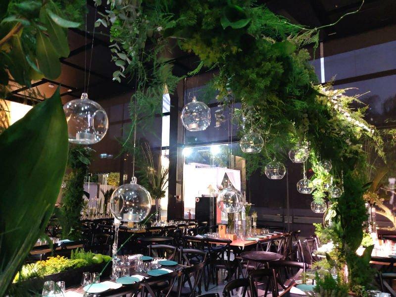 צמחים שיובאו במיוחד מאמסטרדם