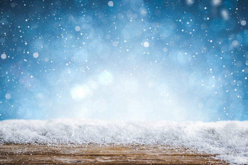 צילום: REDPIXEL.PL / Shutterstock.com