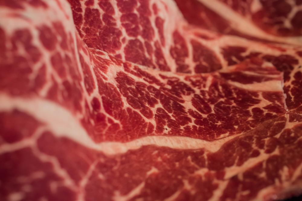 צילום: rainieC / shutterstock.com